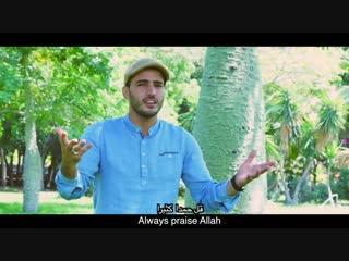 Mohamed Tarek - Tabassam