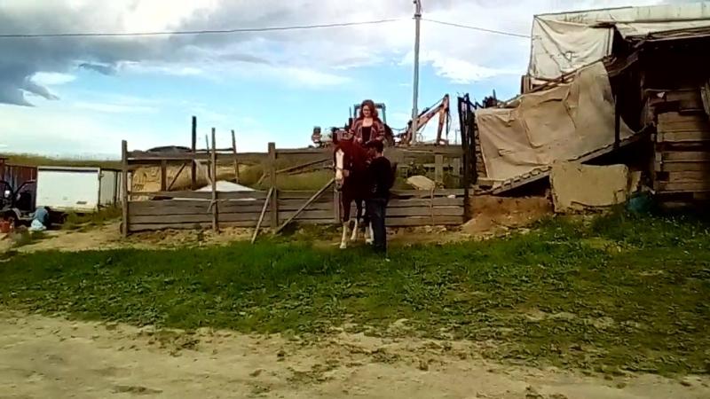 Конная прогулка в Суоранде 04.07.18