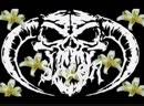 SALEM King Night Rotterdam Terror Corps Gabber Remix