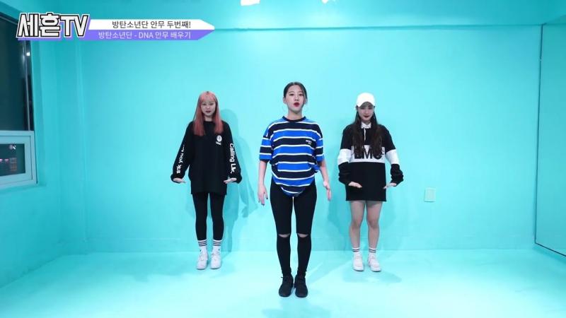 세흔TV 6회 _ 방탄소년단(BTS) - DNA