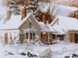 Cade la neve Adamo
