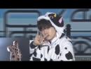 Agust D (Cow D)