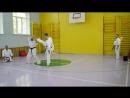 Показательные выступления инструкторов киокушинкай каратэ