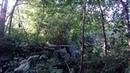 Эльф Линедж созерцает камни древних лесных дольменов