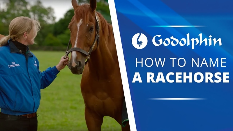 Staff Stories | How to Name a Racehorse