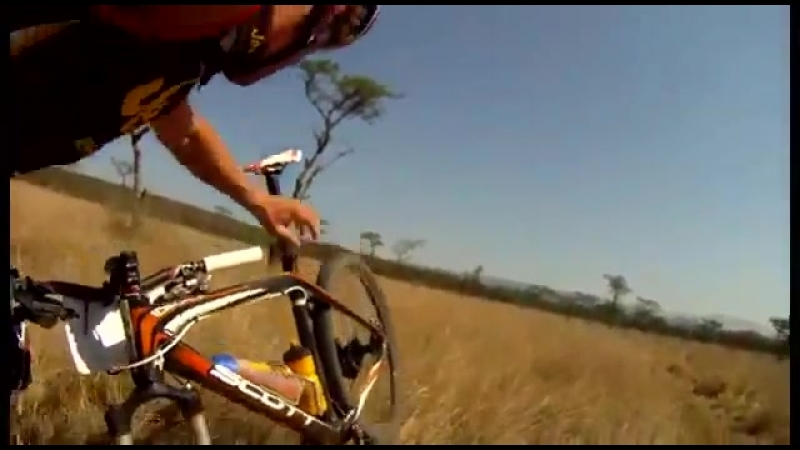 Mountain Biker gets nailed by Antelope (HD FOOTAGE)
