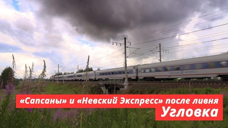 «Sapsan» high-speed trains through the shower