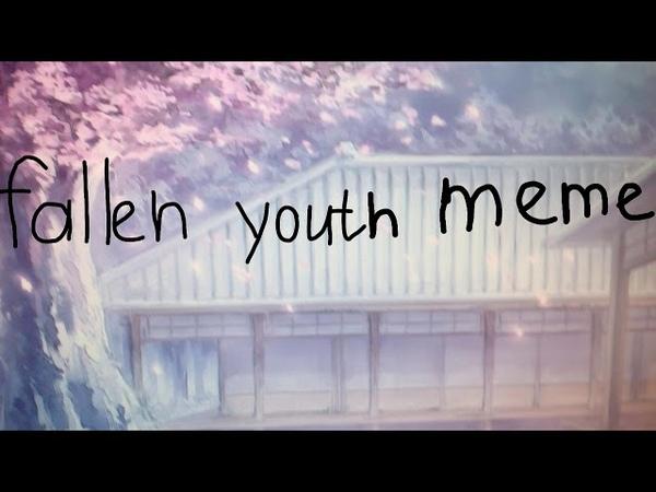 Fallen youth meme