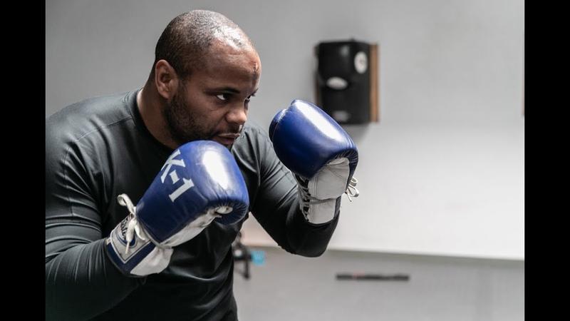 Даниэль Кормье готовится к UFC 230