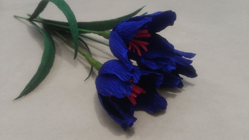 Hướng dẫn làm hoa nghệ tây bằng giấy nhún | Hoa giấy handmade Saphia