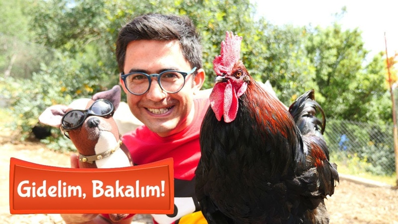 Çocuk videosu Gidelim bakalım Nail Baba ile tavukları besliyoruz