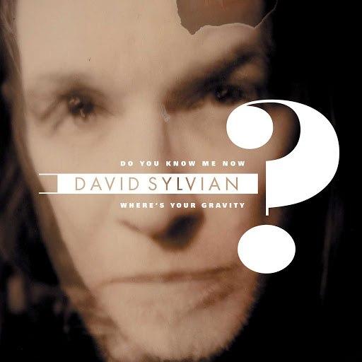 David Sylvian альбом Do You Know Me Now?