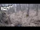Подъем без вести пропавших солдат Вахта памяти день 1