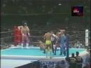 WCW Japan Supershow III (NJPW Fantastic Story 1993 In Tokyo Dome) (1993.01.04)
