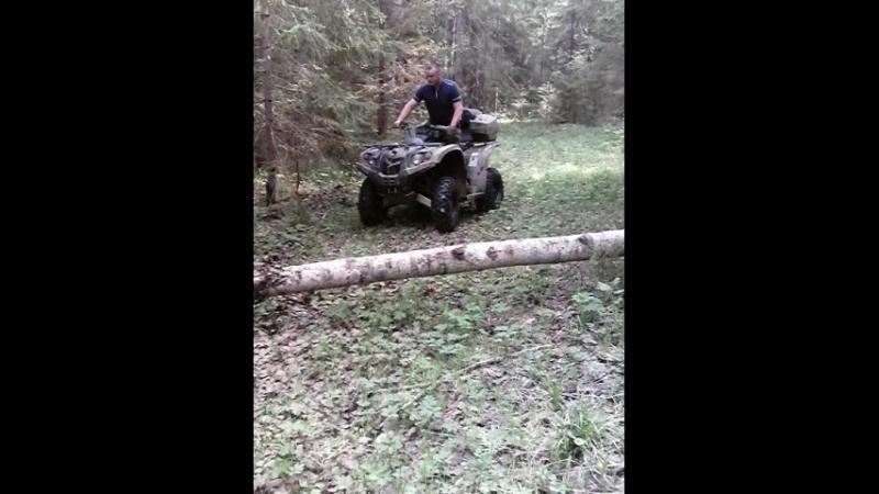 Стелс 500h в лесу.