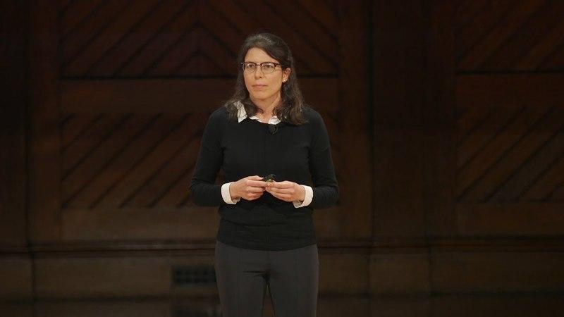 Harvard Horizons Symposium 2018 | Full Event