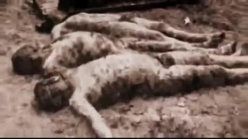 Революция 1917 года,которую мы не знаем ЕВРЕИ Геноцид русских