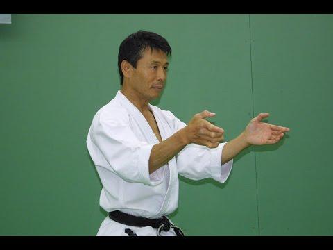 Unsu Kata Seminar by Mikio Yahara Moscow 2003