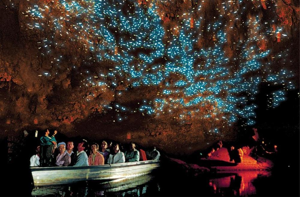 Светящаяся пещера Вайтомо в Новой Зеландии