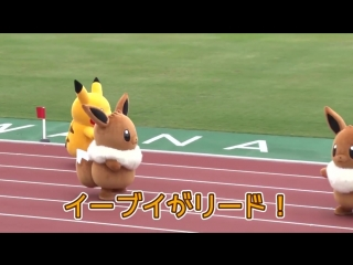 Meanwhile in Japan they are VERY competitive about eevee vs pikachu...😂