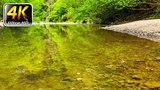 Nature sounds 1 hour, soothing sound of river, singing birds to sleep