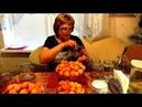 Абрикосовый компот рецепт без стерилизации Заготовка на зиму