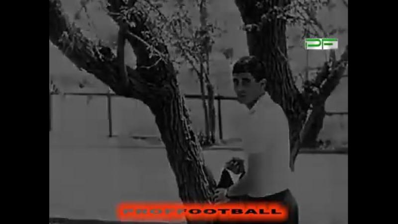 Документальный фильм Проффутбол про футбольную династию Абраамянов