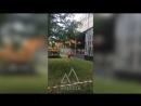 ДААЗ ломают окна Димитровград