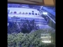Человек упал с моста на проезжавшую машину в Геленджике