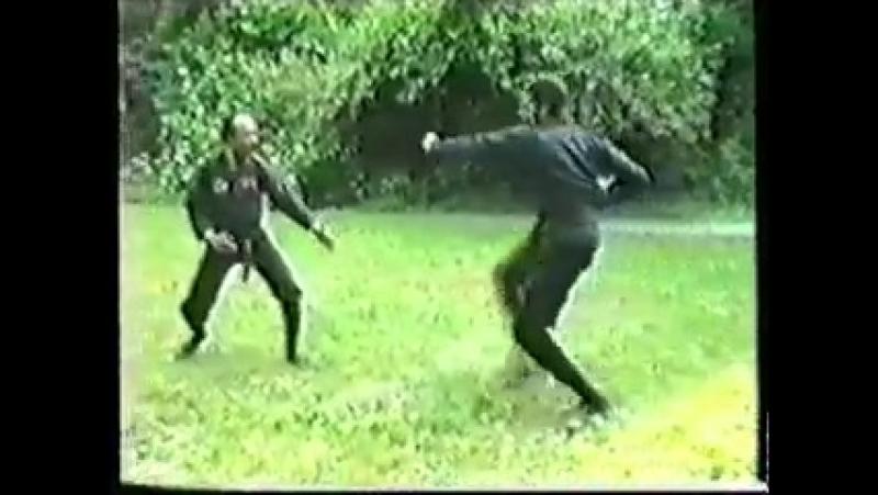 Ниндзюцу ЗАП Мастерство и тренировки