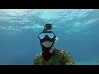 Deep house presents: gopro  directors cut - shark riders