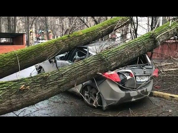Последствия ветра близкого к ураганным значениям в Москве и области 21 апреля 2018