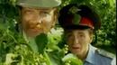Отчего так в России березы шумят?