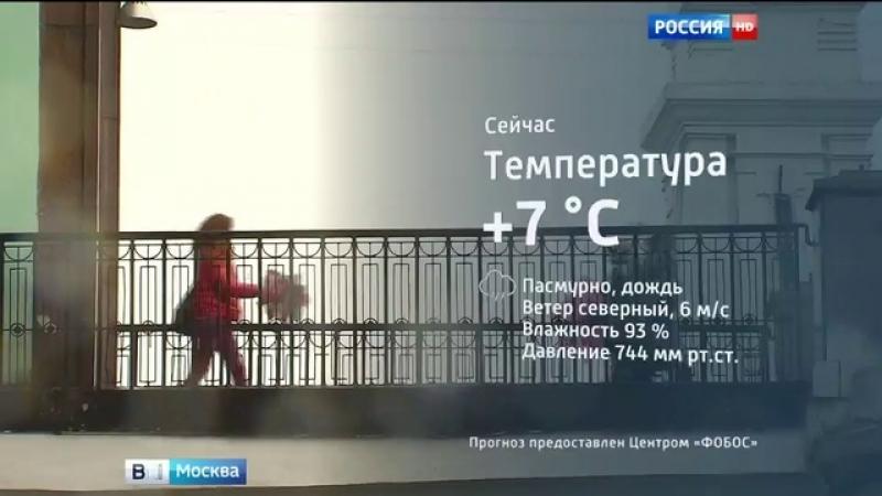 Вести-Москва • Упавшее дерево перекрыло движение по Олонецкой улице в Москве