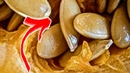 ПАРАЗИТЫ ВЫЛЕТЯТ из организма САМИ, если Съесть эти ОБЫЧНЫЕ… Средство за КОПЕЙКИ
