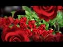 Цветы милым женщинам!.720.mp4