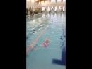 Заплыв на спине 50метров 25.12.2017