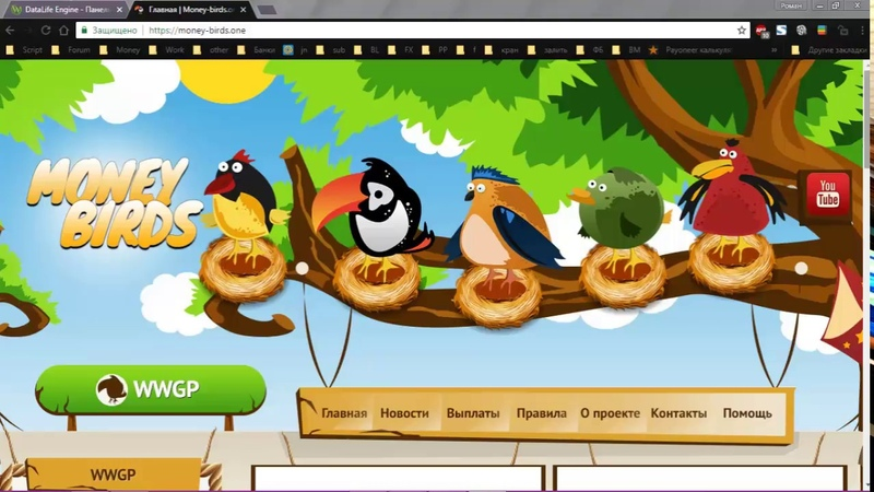 MONEY-BIRDS - Видео обзор проекте. Доходность до 61 в месяц!