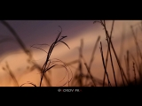 Видеопортрет .Музыка из рекламы - Lancome
