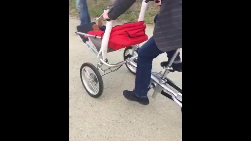 Стальная велокеоляска Taga bike