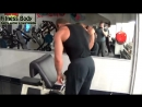 8 Shoulders Workout 8 Ejercicios para Hombros Fitness