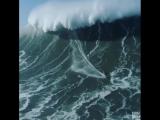ocean_Bg7pBQ9l_Lx.mp4