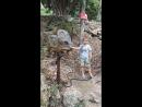 Парк динозавров 23 09 2018