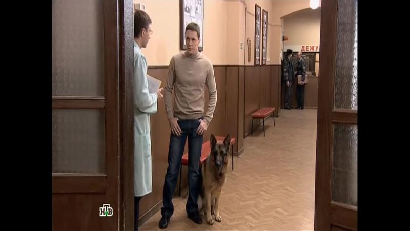 Возвращение Мухтара 8 сезон 83 серия «Часы с кукушкой»