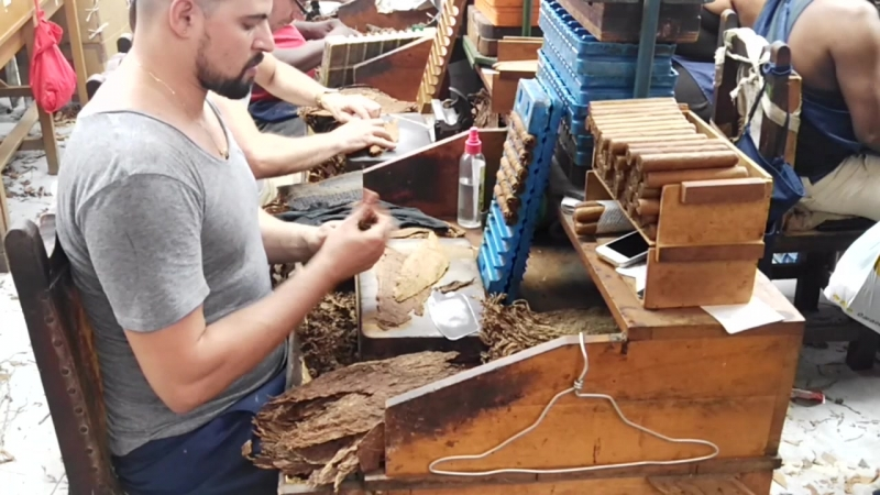 Секретное видео с фабрики сигар на Кубе