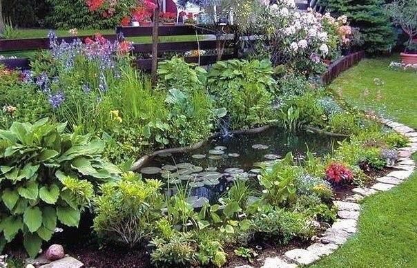 Какие растения посадить у садового пруда