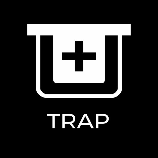 Gemini альбом Trap