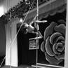"""Emily Moskalenko on Instagram: """"У нас юбилей. Этому танцу Самара Морган из фильма Звонок ровно год. постановка пилонисты увлечение спортсме..."""