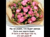 doc309123953_467298253.mp4