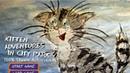 Kitten Adventures in City Park-100% Steam Achievement